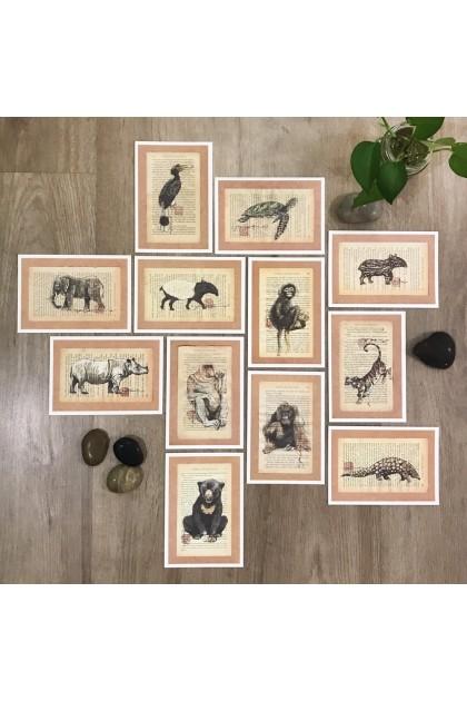 MUOC - Malaysia Animal Postcard